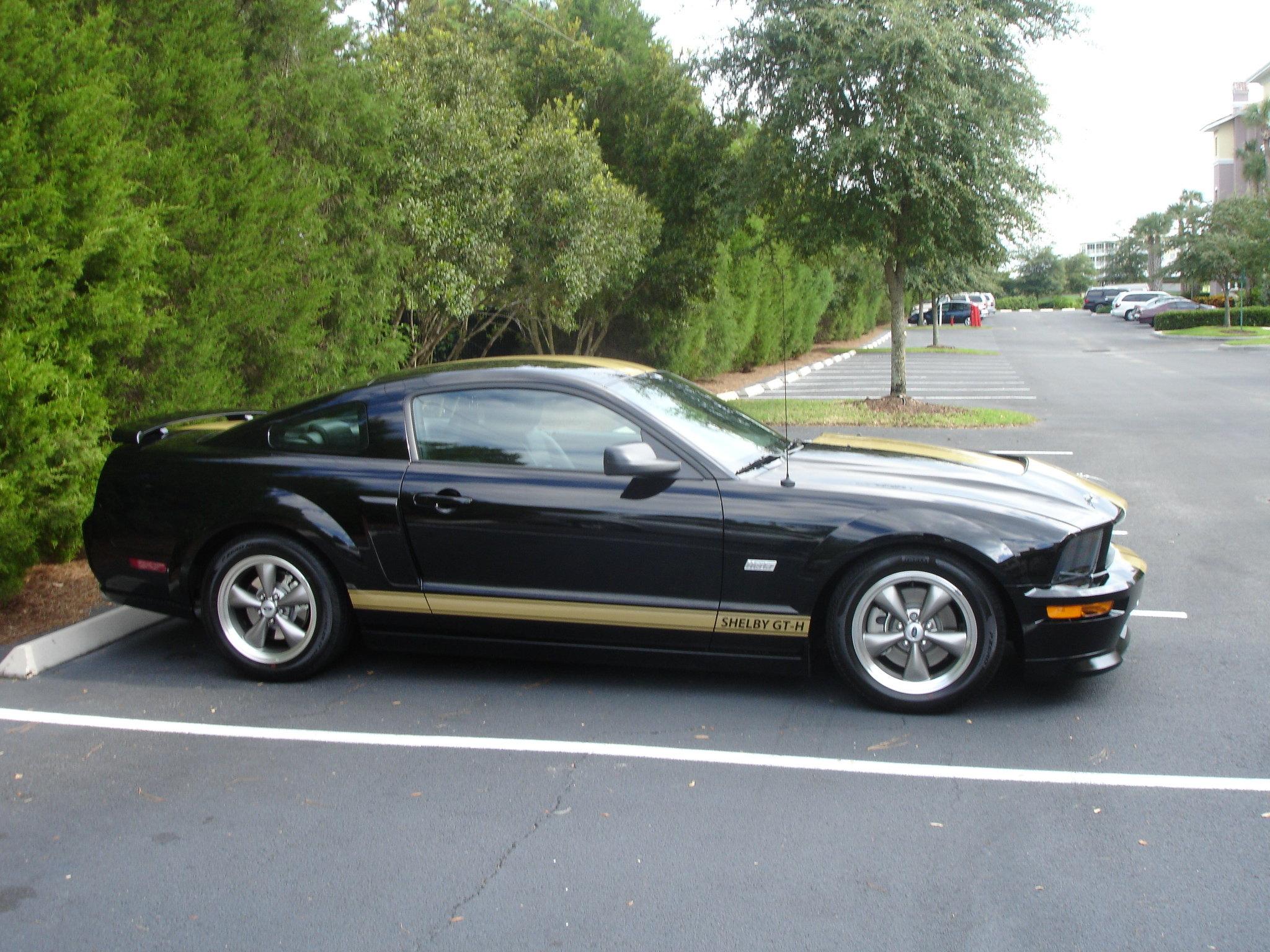 06 Shelby Gt H